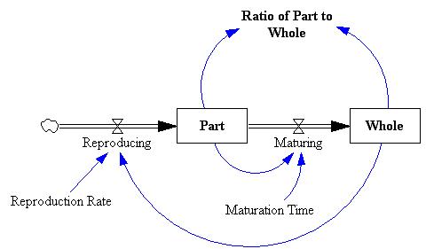 Fibonacci Part Whole