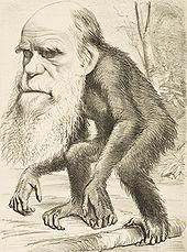 170px-Darwin_ape